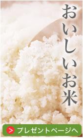 お米プレゼント